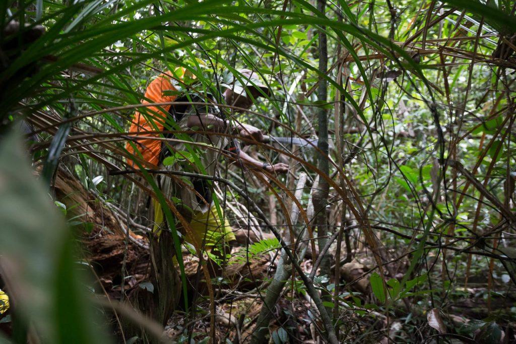 guide macet jungle trekking indonesia ionescu vlad
