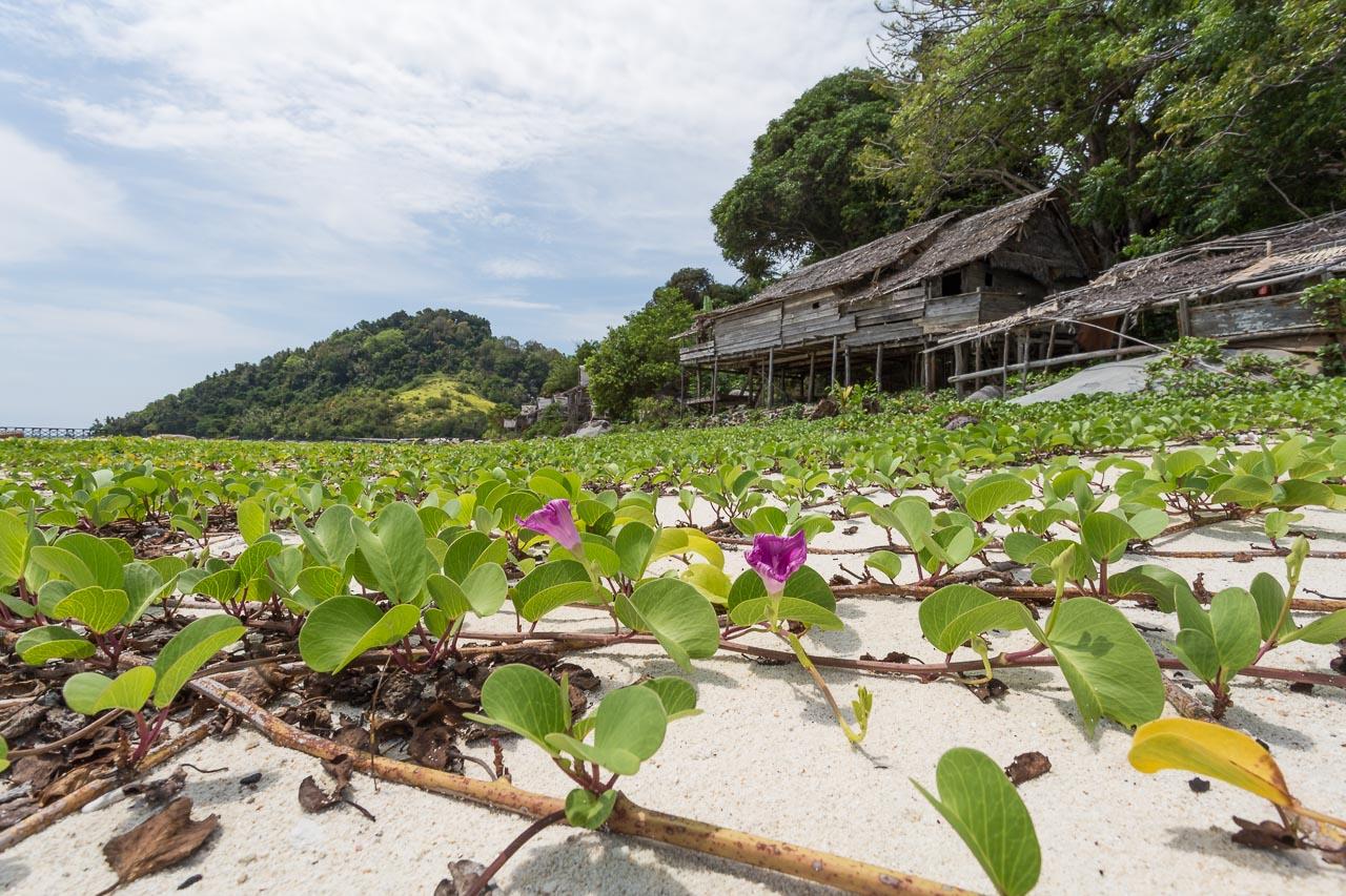 paradise island indonesia photographer ionescu vlad
