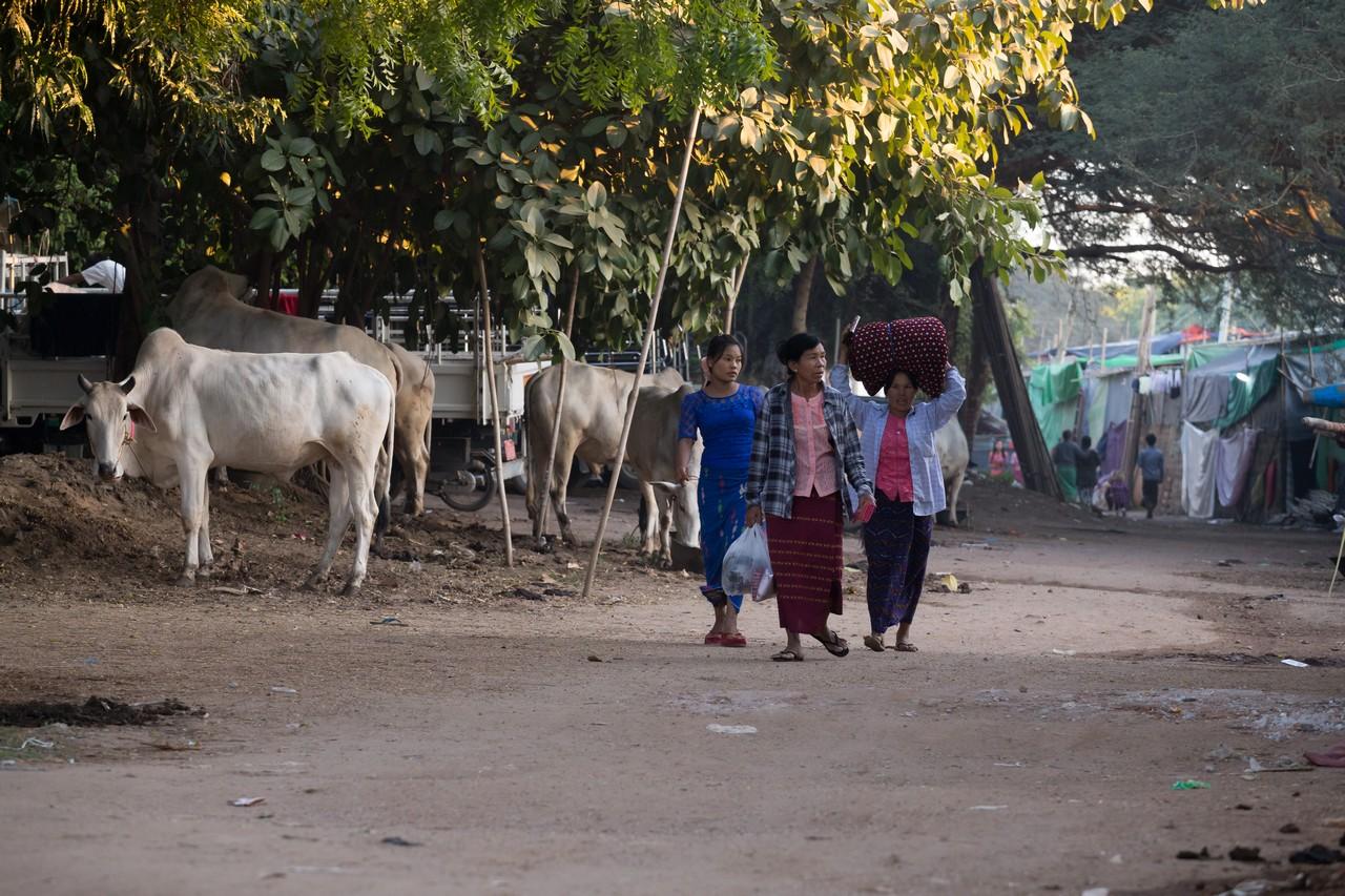 ionescu vlad travel photographer myanmar burma bagan13