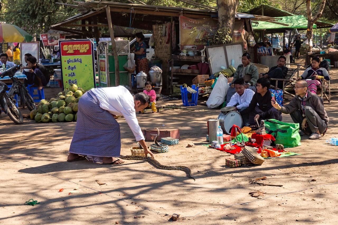 ionescu vlad myanmar burma bagan ananda festival14